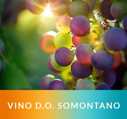 vino-do-somontano